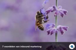 7 voordelen van inbound marketing - Lincelot - FI