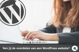 Ken jij de voordelen van een WordPress website - Lincelot
