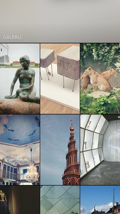 Instagram Stories - Gallerij - Lincelot