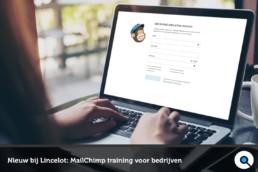 Nieuw bij Lincelot - MailChimp training voor bedrijven - Lincelot - FI