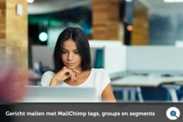 Gericht mailen met MailChimp tags groups en segments - Lincelot - fi
