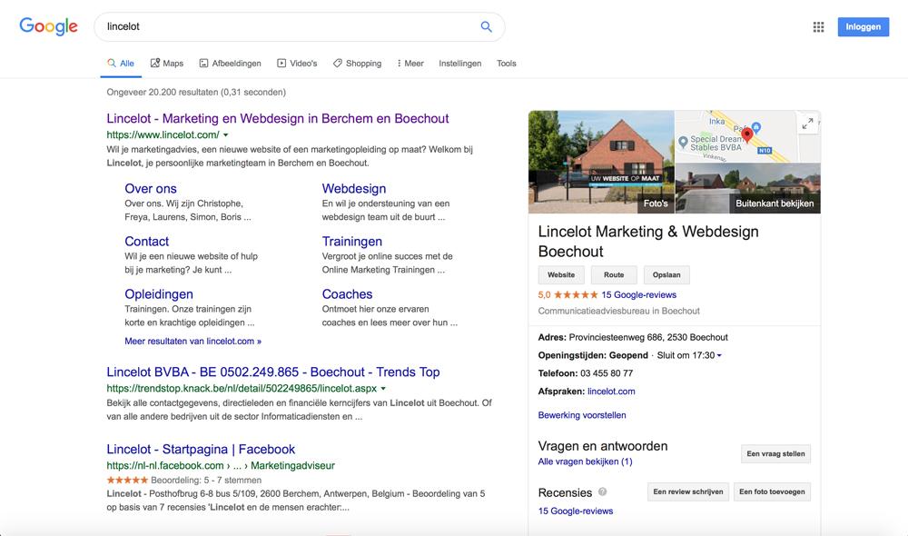 Hoe verzamel je Google recensies voor je bedrijf - voorbeeld Google recensie - Lincelot