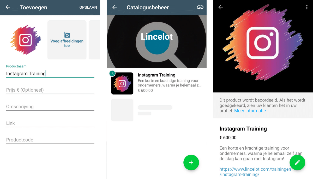 Blog Lincelot - WhatsApp Business
